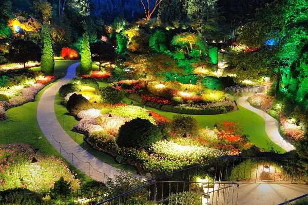 Красиво освещенный сад